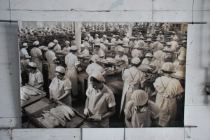 Image of women cannery workers on display at local cannery museum in Astoria.